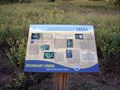 Image for Trees - Boundary Creek Natural Resource Area - Moorestown, NJ