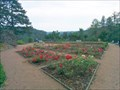 Image for Rose Garden on castle Svojanov, Czech Republic