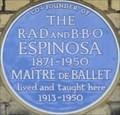 Image for Edouard Espinosa - Lonsdale Road, Barnes, London, UK