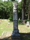 Image for P. Albert Langford - Holly Springs Cemetery - Martins Mill, TX
