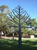 Image for Metal Trees, Joondalup, Western Australia