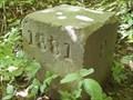 Image for 1881 Survey milestone on Ohio-Pennsylvania border, Mile 17