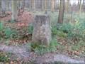 Image for Triangulation Pillar - Great Widmoore Wood, Tring, Buckinghamshire.