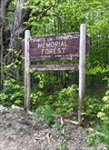 Image for Chamberlain-Reynolds Memorial Forest - Center Harbor, NH