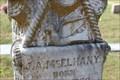 Image for J.A. McElhany - Bullard Cemetery - Bullard, TX, USA