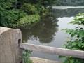 Image for Newton Lake Fishing Hole - Collingswood, NJ