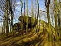 Image for Paganish stones / Pohanske kameny