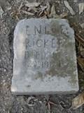Image for Enloe Rickett - Webb Chapel Cemetery - Dallas, TX