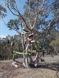 Image for Abercrombie Range Shoe Tree - Curraweela, NSW