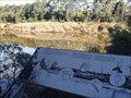 Image for Rehabilitating the Snowy River - Orbost, Vic, Australia