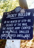 Image for Jockey Hollow