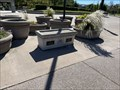 Image for Central Park Time Capsule - San Ramon, CA