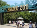 Image for The Bronx Zoo