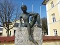 Image for Junge - Prien am Chiemsee, Lk Rosenheim, Bayern, Germany