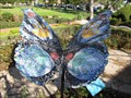 Image for Butterfly - La Habra, CA