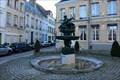 Image for La fontaine de l'enfant au cygne - Saint-Omer, France