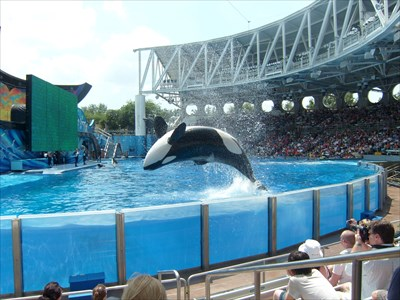 Sea World - Florida - USA.