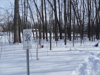 Photo des environs et du panneau. Photo of the surroundings and the panel