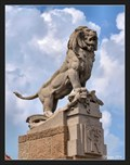 Image for Roaring lion - Lysice, Czech Republic