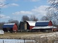 Image for Mitchell Charolais Farm - Holly, MI