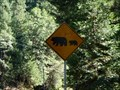 Image for Bear crossing - HW 49 CA