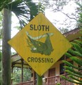 Image for Sloth Crossing - Limón, Costa Rica