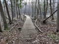 Image for Trail 26M Boardwalk in Stoney Swamp - Ottawa, Ontario, Canada