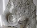 Image for The Rock Exhibit - Castle View Visitor Centre, Corfe Castle, Dorset, UK