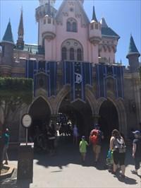 Backside of Castle, Disc Is Under Large Center Flag
