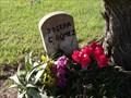 Image for Josefa C. Gomez - Krasna Cemetery, Wallis, TX