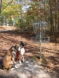 Image for Sequoyah Park Disc Golf Course