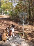 Image for Sequoyah Park Disc Golf Course