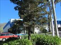Image for San Luis Obispo County YMCA - San Luis Obispo, CA