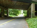 Image for Greenfield's Gravity Hill - Greenfield, MA