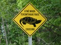 Image for Snapping Turtle Crossing - Wahta Mohawk Territory