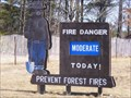 Image for Smokey the Bear in Stevens Point, WI