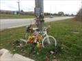 Image for Elizabeth Maupin - Ghost Bike - Canton Michigan