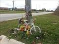 Image for Elizabeth Maupin - Ghost Bike - Canton Michigan
