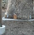 Image for Inniswood Metro Gardens Wee Folk Fairy Door - Westerville, OH