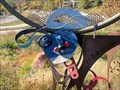 Image for Longhorns - Glenwood Springs, CO