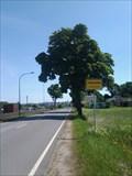 "Image for Falkenstein - Regionalausgabe ""Vogtland"" - Falkenstein/SN/Germany"