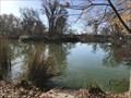 Image for Southside Park Pond - Southside Park -Sacramento, CA