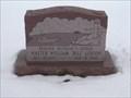 Image for Luxion Headstone - Naperville Cemetery - Naperville IL