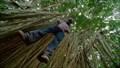 """Image for Kawela Bay - """"Lost"""" (Season 1 Episode 11) - Oahu, HI"""
