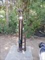 Image for Wellington Bike Park - Breckenridge, CO, USA