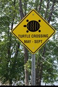 "Image for ""SKY  LAKE""  Turtle Cossing Sign - Mar - Ontario CANADA"