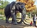 Image for Texas Mammoth - Dallas, TX