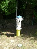 Image for Dalmation Hydrant - Bala, Ontario, Canada