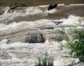 Image for Price-Stubbs Dam Fish Ladder - Palisade, CO