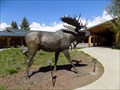 Image for Moose  -  Moose, WY